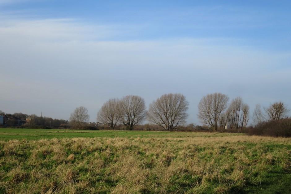Leyton Marshes