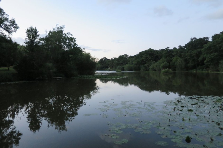Hadley Common Lake
