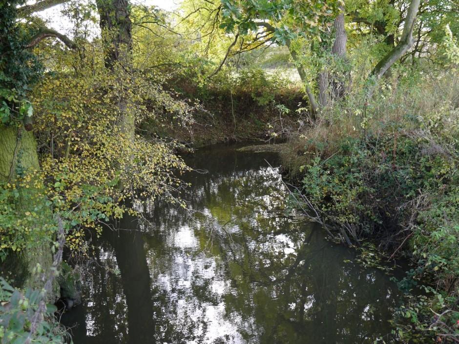 Cobbins Brook