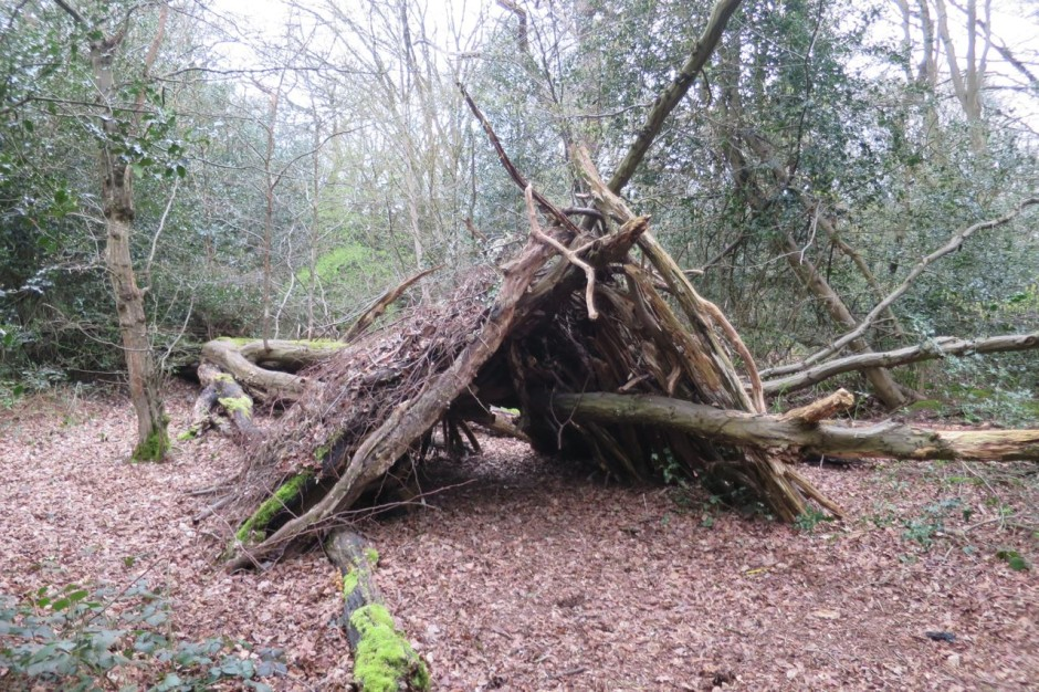 bushcraft shelter epping forest