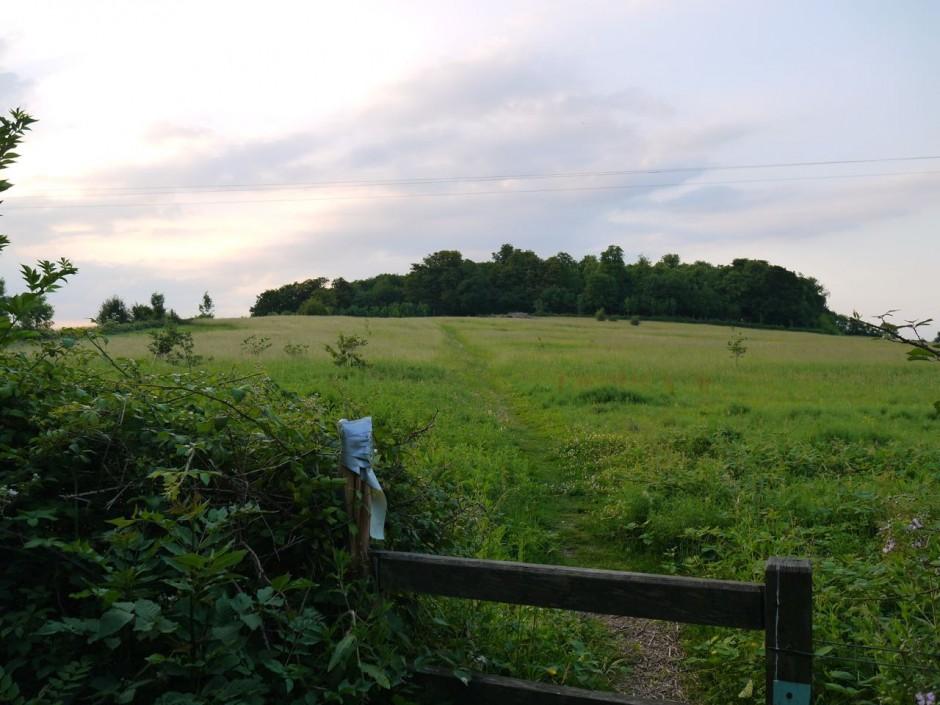 footpath to Barn Hill Sewardstone