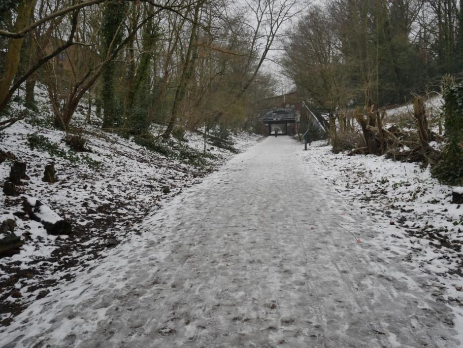 Parkland Walk Haringey
