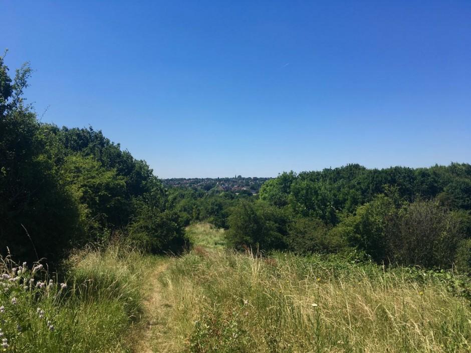 Chigwell walk