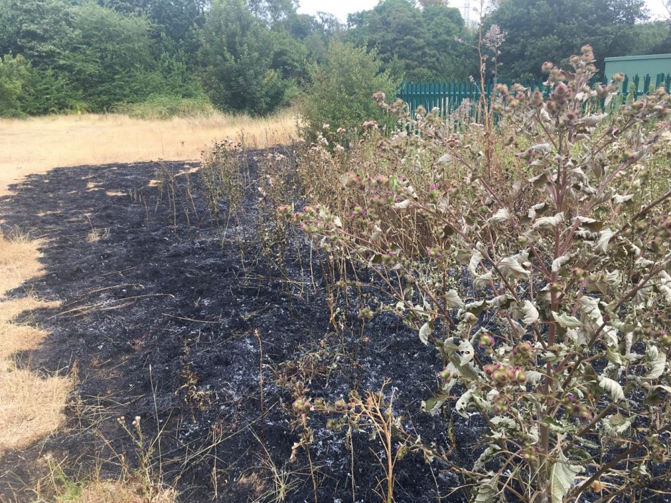 Aldersbrook fire