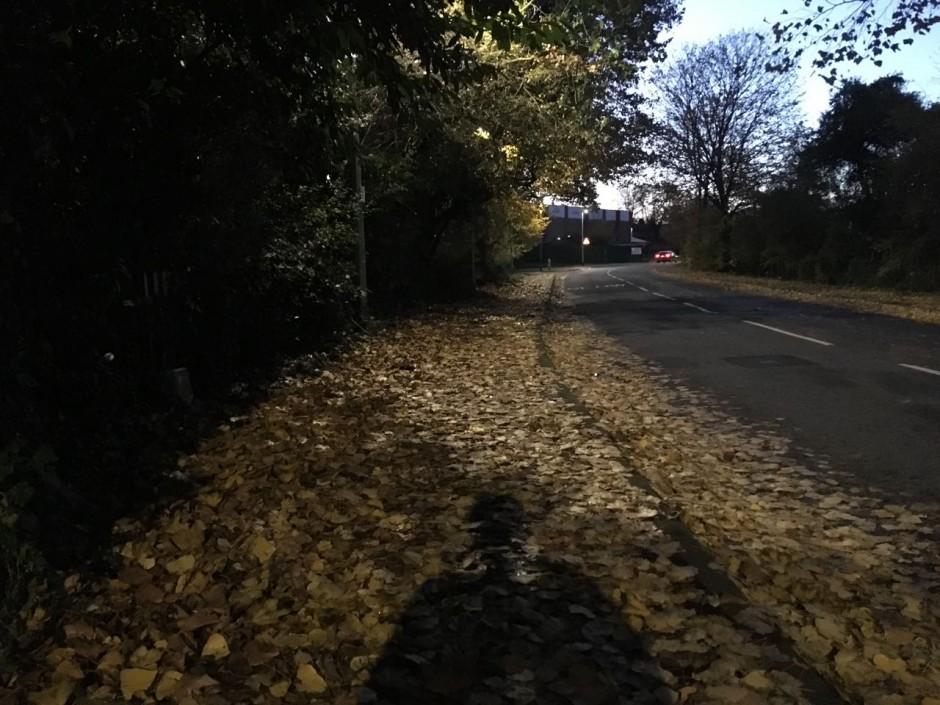 Redbridge Lane West
