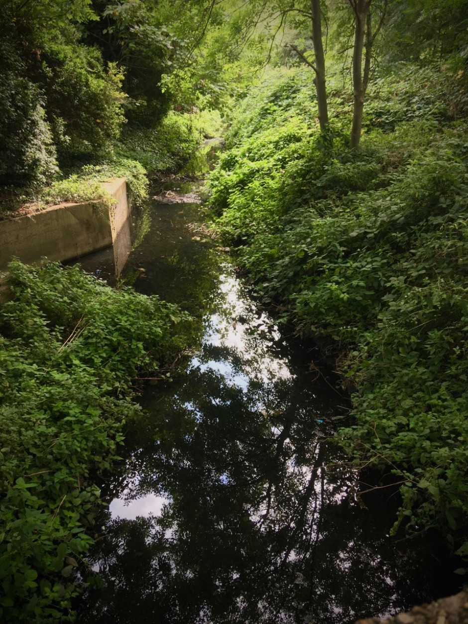 The Dagenham Brook
